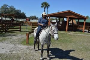 lauren-horse